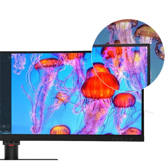Lenovo Monitors 02.21jelly
