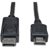 Tripp Lite 6ft DisplayPort to HD Adapter Cable Video / Audio Cable DP M/M