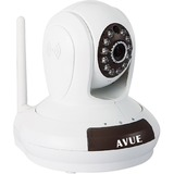 Avue AVP562W Network Camera - Color