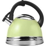 Copco Green Tea Kettle