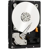 WD-IMSourcing RE WD5003ABYZ 500 GB Hard Drive