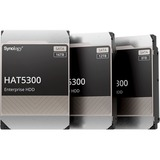 Synology HAT5300-12T 12 TB Hard Drive
