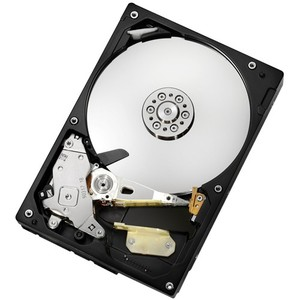 """HGST Deskstar 7K1000 1 TB 3.5"""" Internal Hard Drive"""