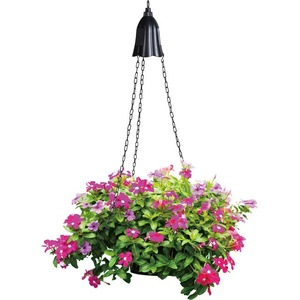 Coleman Cable 92323 Solar Powered LED Hanging Planter Light