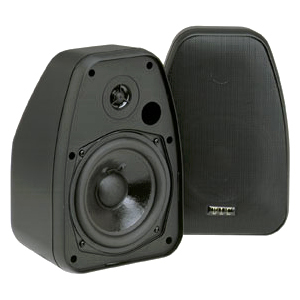Bic America Adatto Dv52Si Adatto Indoor/Outdoor Speakers (Black)