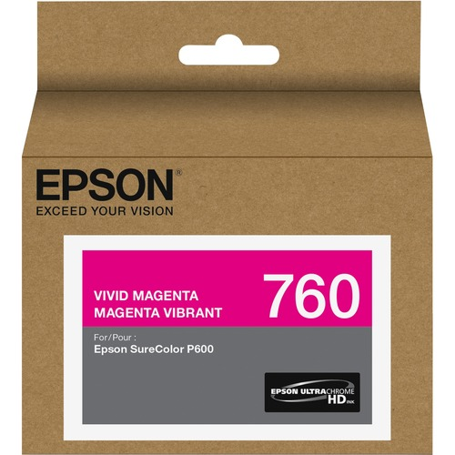Epson UltraChrome HD T760 Original Ink Cartridge 300/500