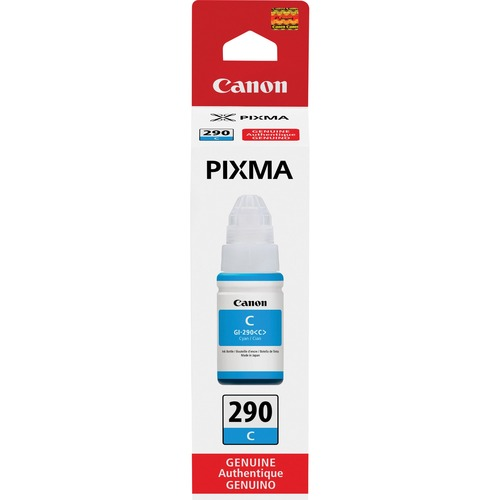 Canon PIXMA GI 290 Ink Bottle 300/500