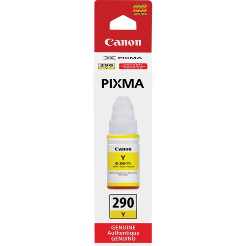 Canon PIXMA GI 290 Ink Bottle 300/500