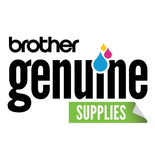 Brother TZe Premium TZePR234 Label Tape Alternate-Image3/500