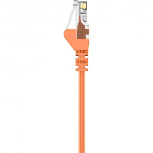 Belkin Cat5e Patch Cable Alternate-Image5/500