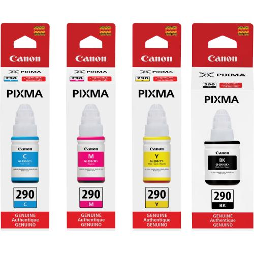 Canon PIXMA GI 290 Ink Bottle Collections/500